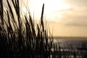 puesta-de-sol-hlsbg
