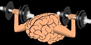 cerebro-delgado
